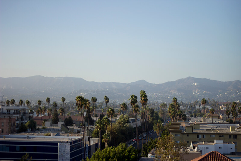 View of Hollywood Hills - The Line Hotel